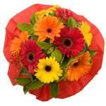 Order Floral Gifts Online