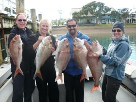 Fishing with 4 Reel in the Bay of Islands